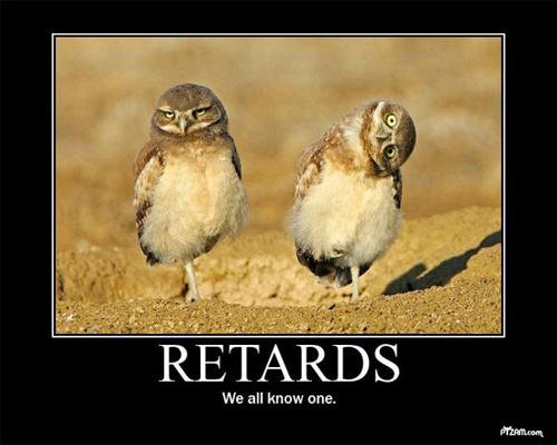 retard-owls